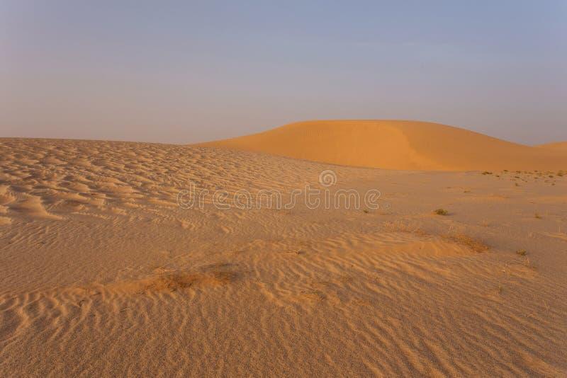 Sahara Wüste stockbilder
