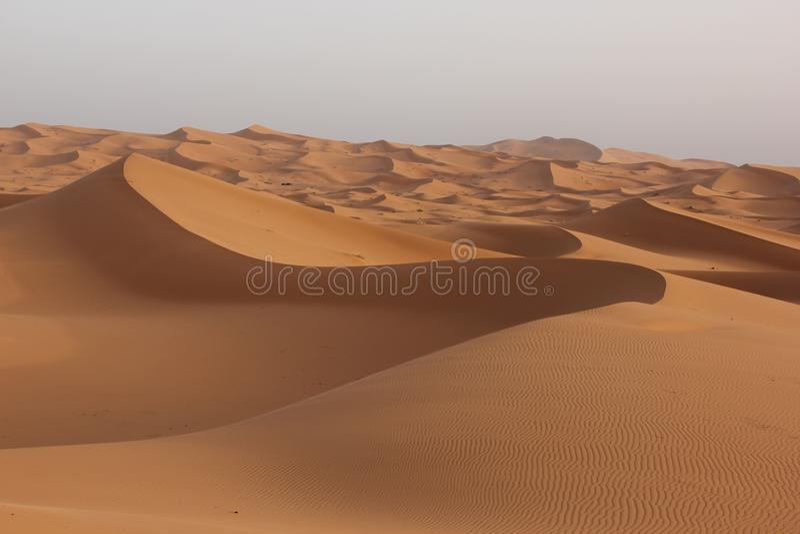 Sahara Wüste lizenzfreies stockbild