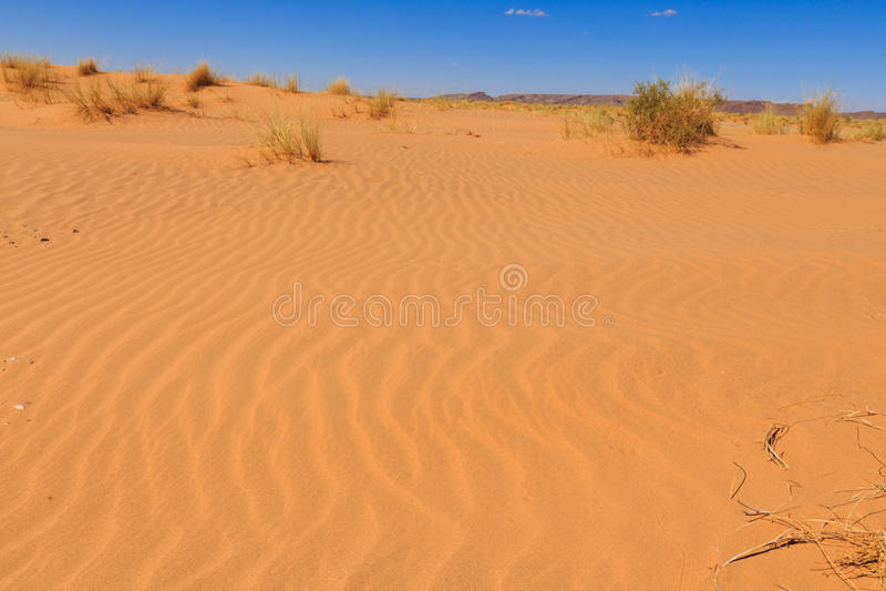 Sahara-Wüste, Marokko stockbilder