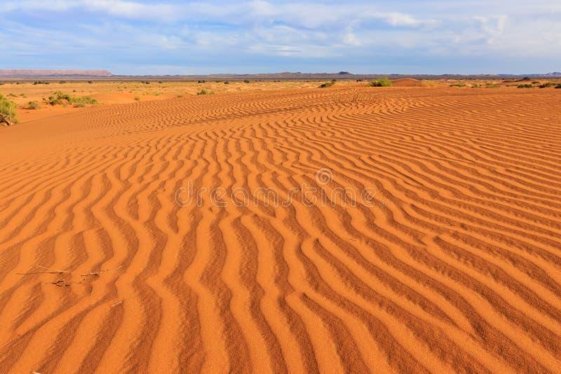 Sahara-Wüste, Marokko stockfotografie