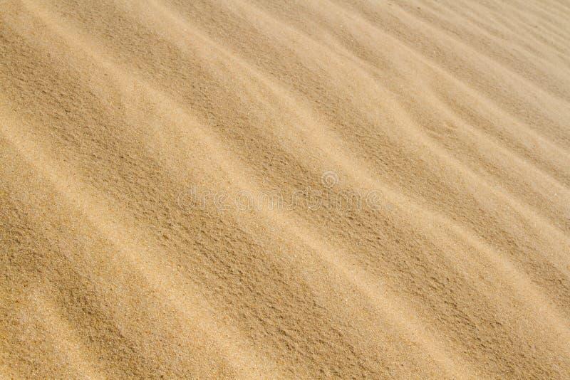 Sahara wysyła teksturę fotografia stock