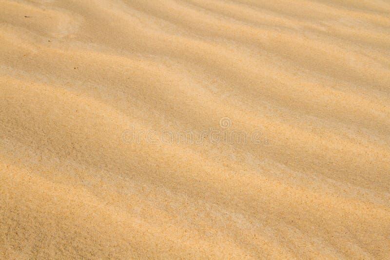 Sahara wysy?a tekstur? obrazy stock