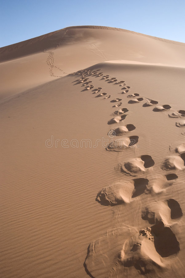 Saharan Zand 1 stock afbeelding