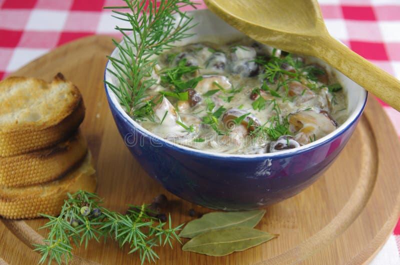 Sahnesuppe mit Boletus stockfoto