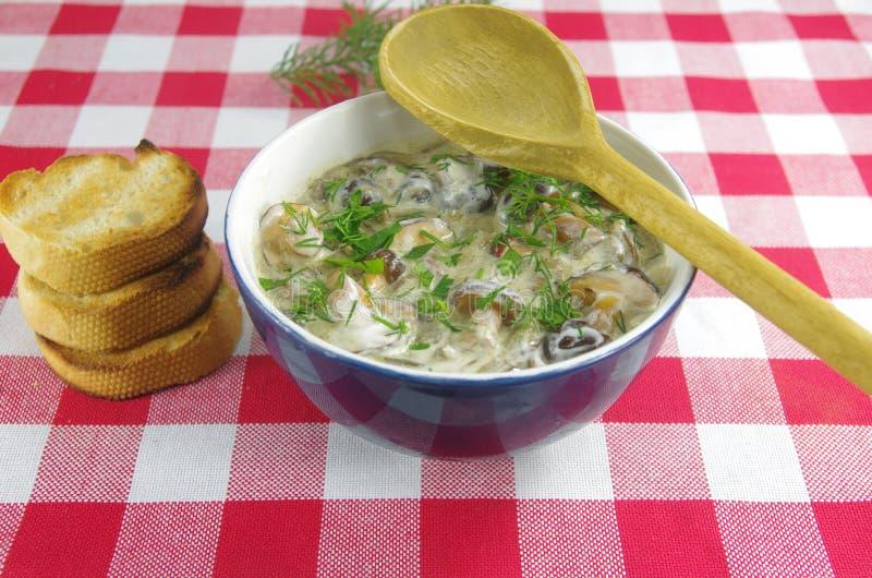 Sahnesuppe mit Boletus lizenzfreie stockfotos