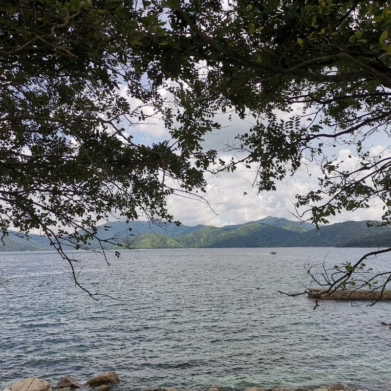 Sai Kung Bay sous des arbres photo stock