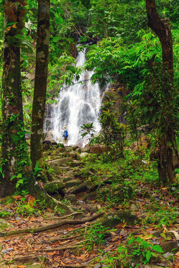 Download Sai Rung Waterfall In The Jungle Of Thailand Stock Photo - Image: 28855582