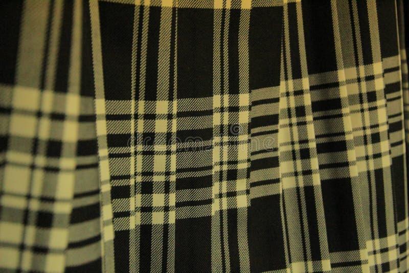 Saia escocesa plissada da tartã foto de stock