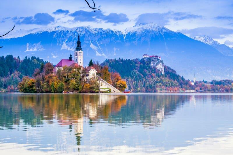 Saigné avec le lac, la Slovénie, l'Europe photographie stock libre de droits