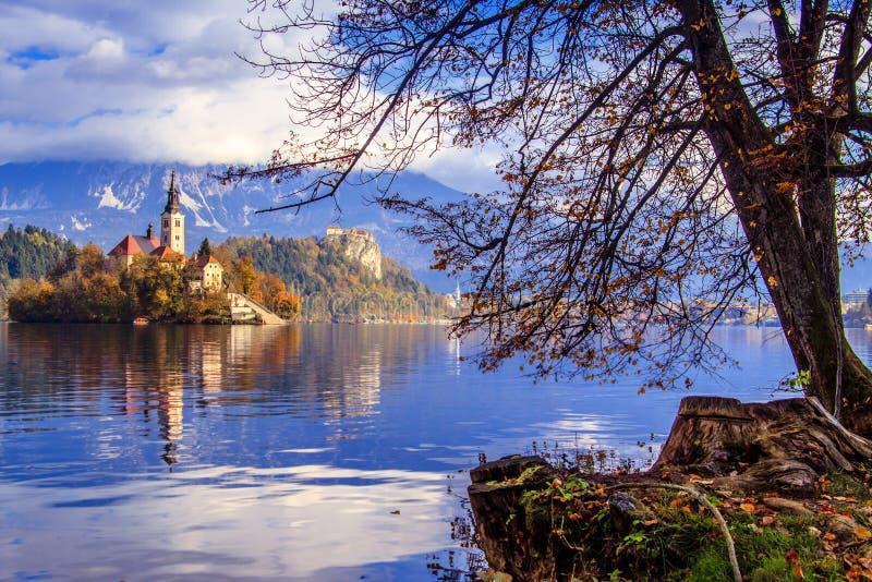 Saigné avec le lac, la Slovénie, l'Europe photos stock