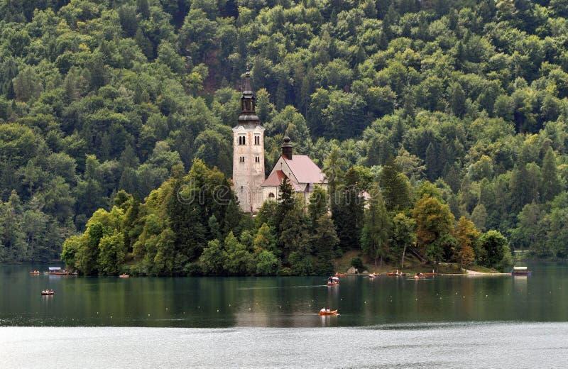 Saigné, la Slovénie photographie stock