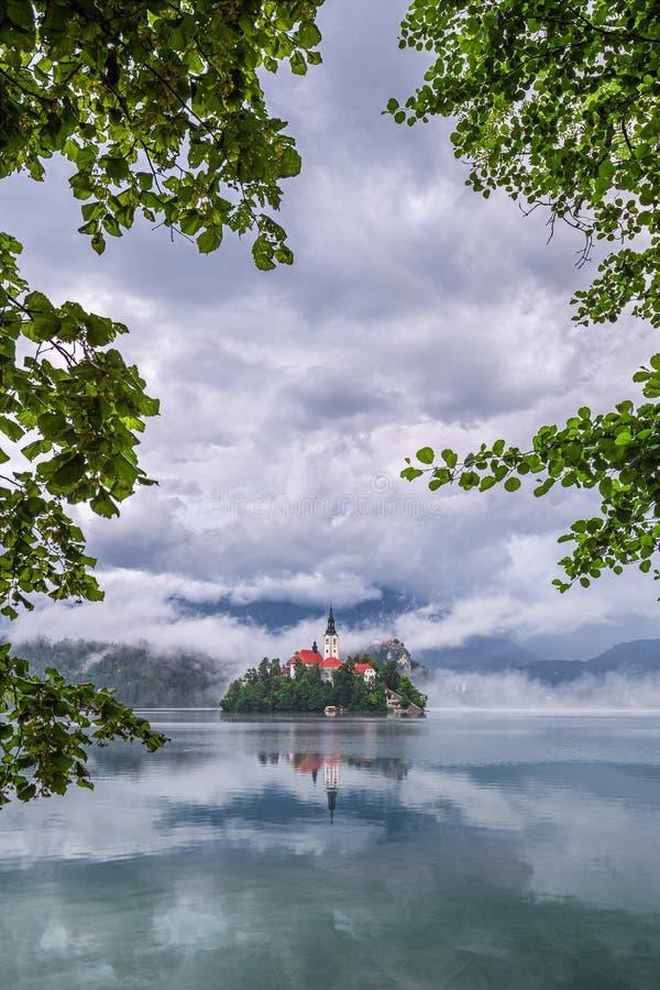 Saigné, la Slovénie - Blejsko saigné beau par lac Jezero avec l'église de pèlerinage de l'acceptation de Maria sur une petite île image libre de droits