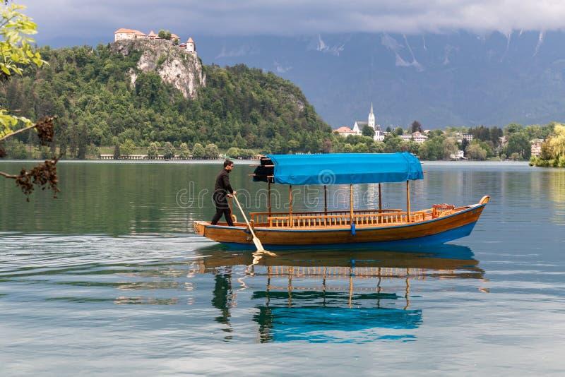 """Saigné, la Slovénie - 18 mai 2019 : hommes ramant un bateau en bois slovène traditionnel appelé """"pletna """"pour transporter des per photo libre de droits"""