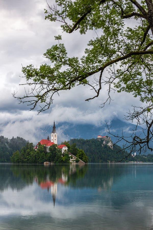 Saigné, la Slovénie - vue brumeuse de matin de Blejsko saigné par lac Jezero avec l'église de pèlerinage de l'acceptation de Mari photo libre de droits
