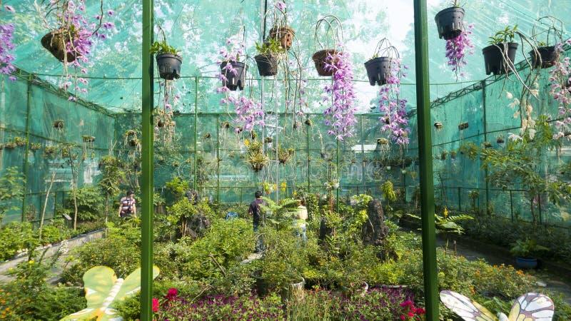 Saigon-Zoo und botanische Gärten lizenzfreie stockfotos