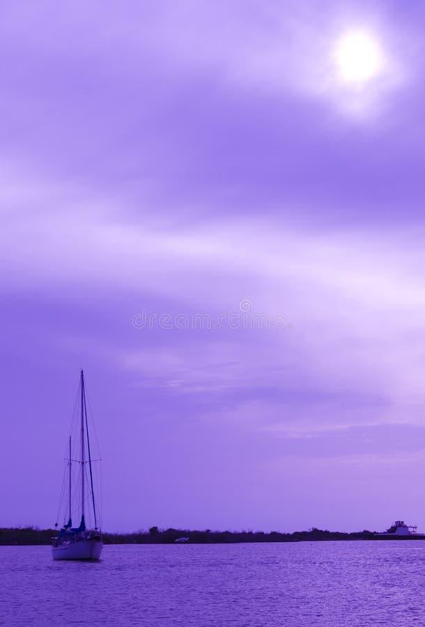 Free Sail Boat Royalty Free Stock Photography - 5598947
