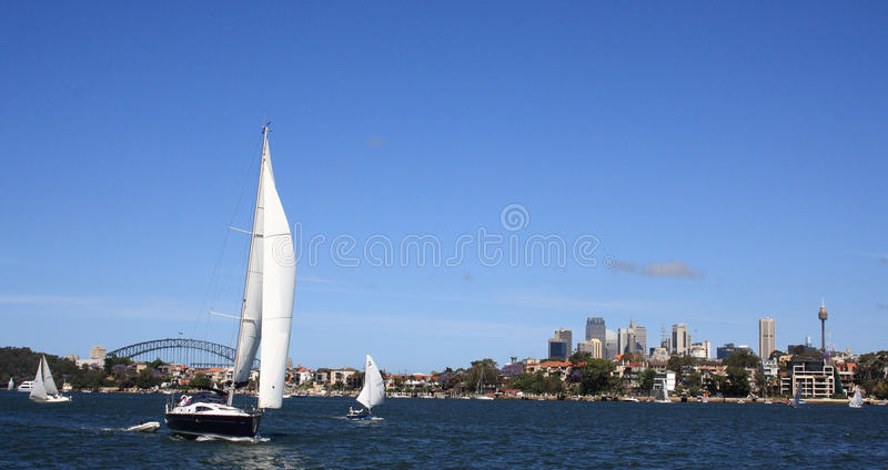 Download Sail Boat In Sydney Harbour Stock Photo - Image: 15679188