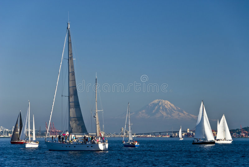 Sail boats in Seattle royalty free stock photos