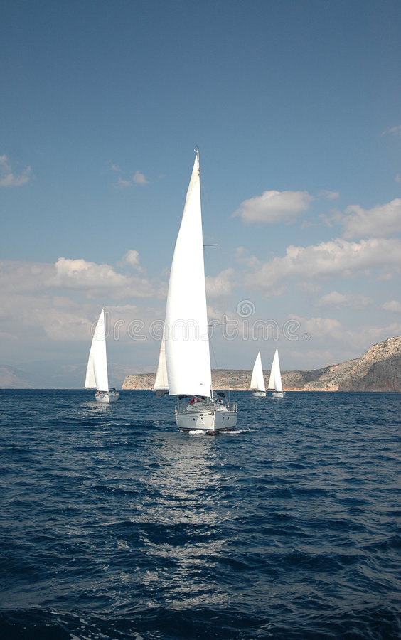 Sail in the sea royalty free stock image
