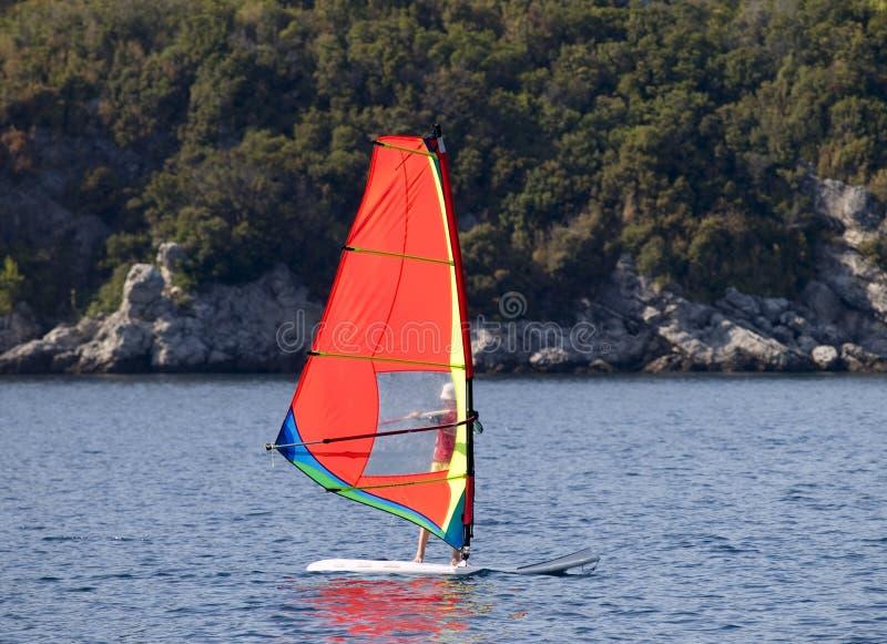 Sailboard image libre de droits