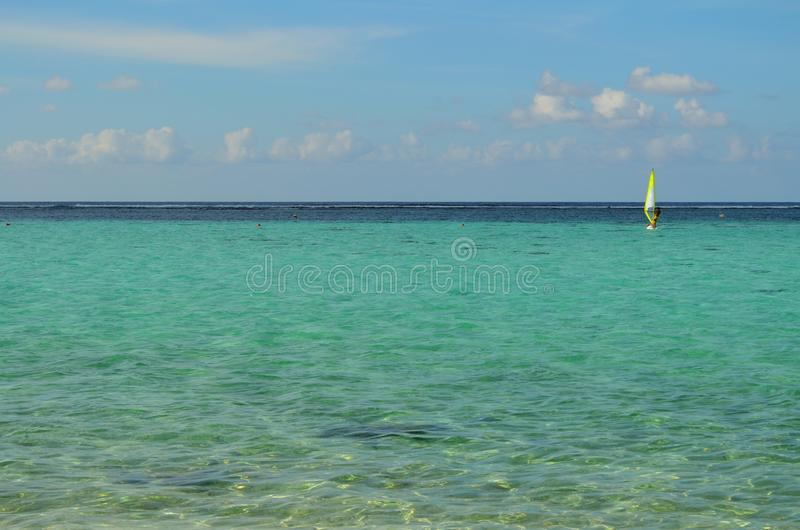 Sailboarder on the Ocean royalty free stock images