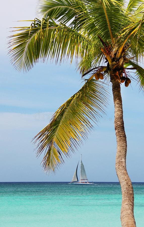 Sailboat που πλέει με τη θάλασσα Τροπικός ωκεανός στοκ φωτογραφίες