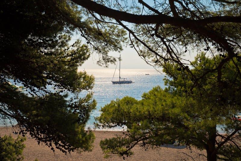 Sailboat στην παραλία αρουραίων Zlatni στοκ φωτογραφία με δικαίωμα ελεύθερης χρήσης