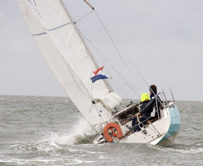 Sailboat royalty free stock image
