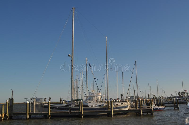 Staggared Sailboat Masts stock photo