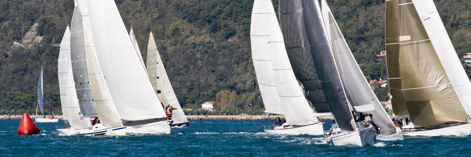 Sailboat Racing stock image