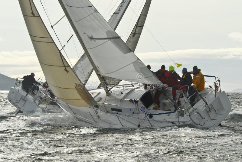 Sailboat Racing on Puget Sound, Seattle, Washington State royalty free stock photography