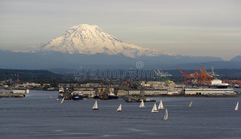 Sailboat Regatta Commencement Bay Puget Sound Mt Rainier Tacoma stock photography
