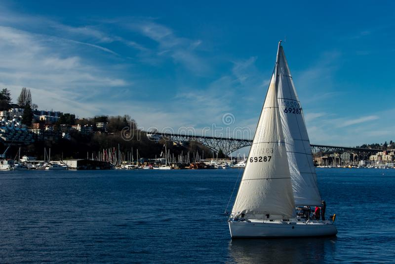 Sailboat sailing on Lake Union on a beautiful day. royalty free stock image