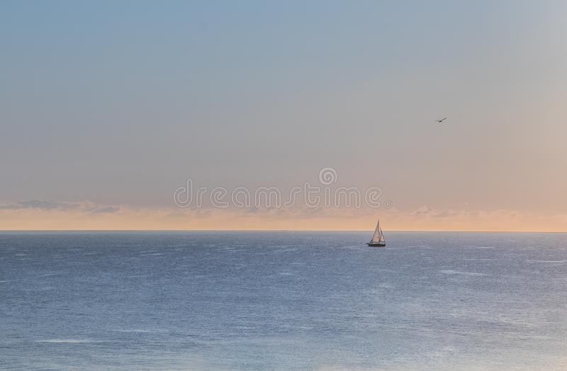 The Sailboat and Seagull at Lake Michigan. A single sailboat on Lake Michigan in Wisconsin with a seagull flying overhead royalty free stock image