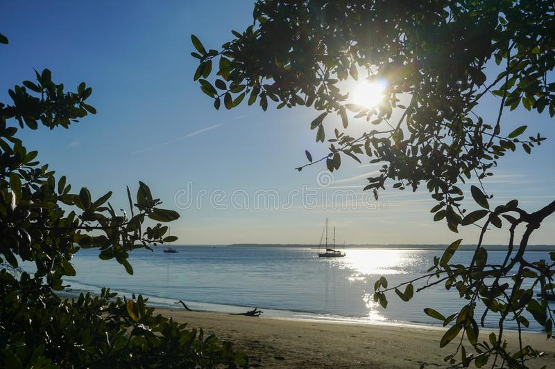 Sailboat travels past beach and trees on a waterway. Silhouetted sailboats travel past a sandy beach on the intracoastal waterway in south Georgia near royalty free stock photography