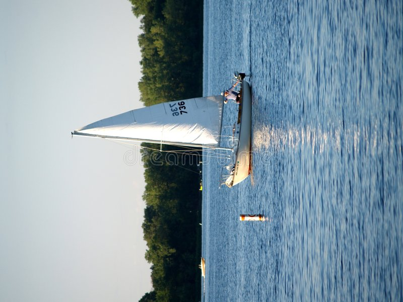 Sailboats royalty free stock photo