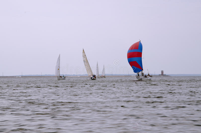 sailboats photo libre de droits