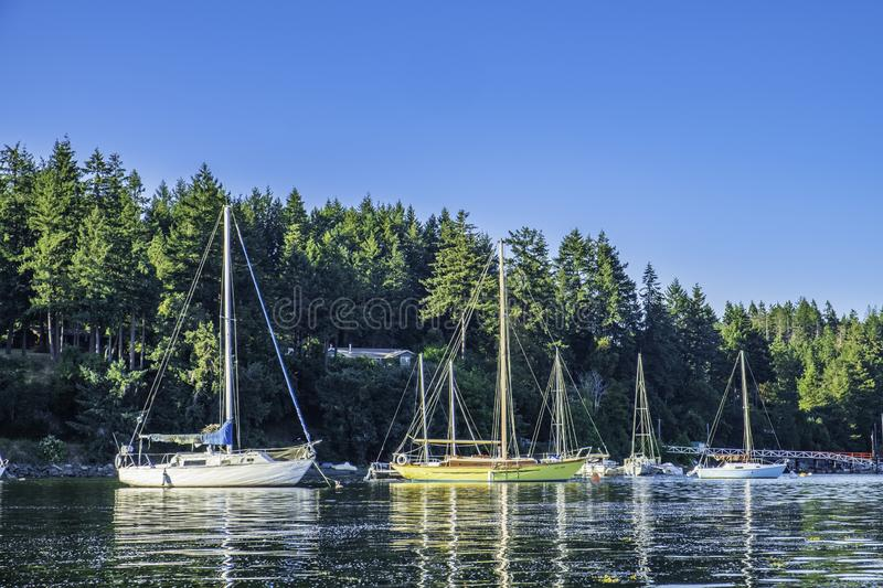 Sailboats Anchored in Degnen Bay stock images