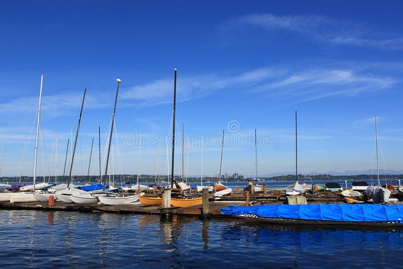 Sailboats docked in Lake Washington royalty free stock photo