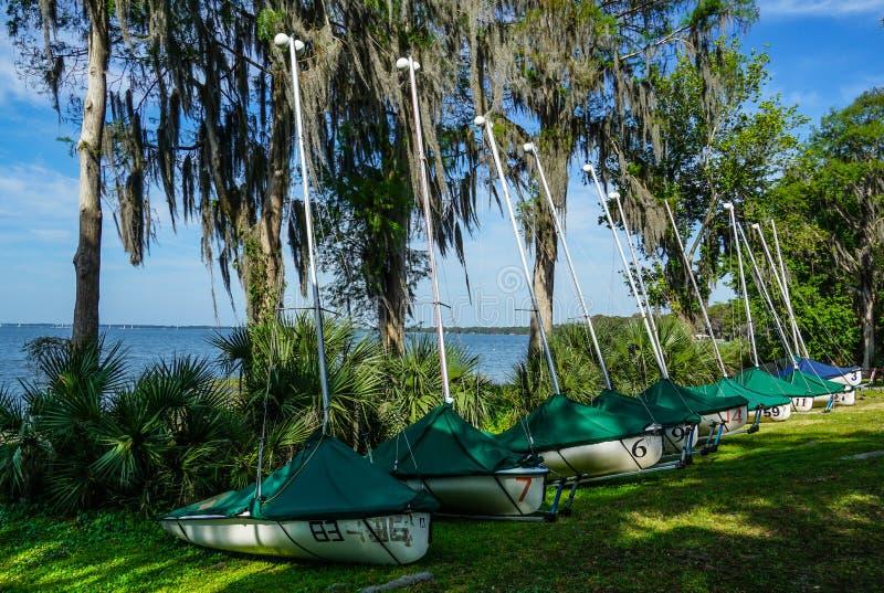 Sailboats lined up along the bank at a Sailing Yacht Club royalty free stock image