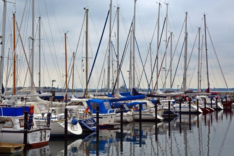 Sailboats in marina stock image