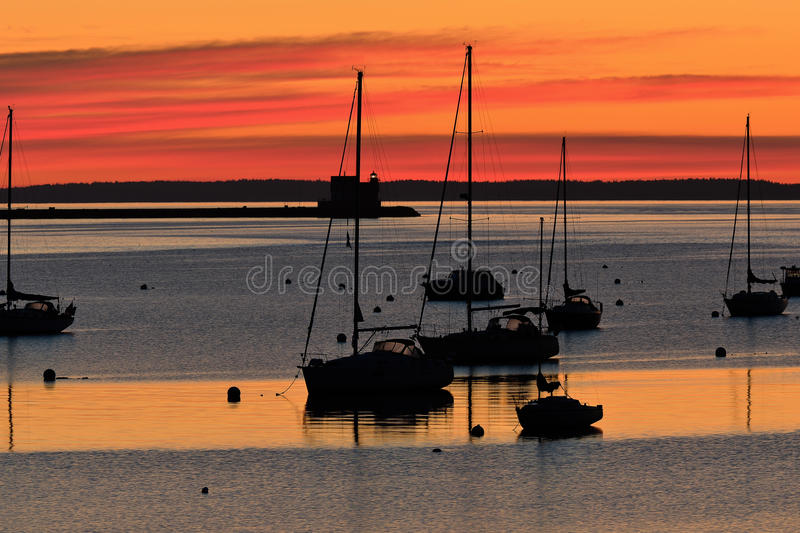 Sailboats in safe Rockland harbor royalty free stock photography