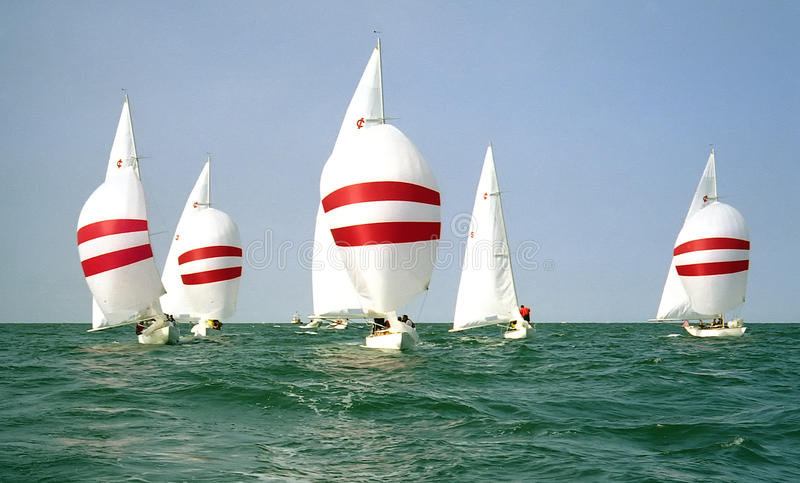 Sailboats sailing downwind with spinnakers. Sailboats in a race sailing downwind with their spinnakers flying stock photo