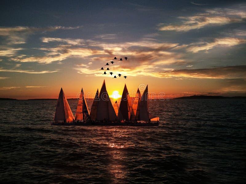 Sailboats Sailing on Sea during Sunset stock photography