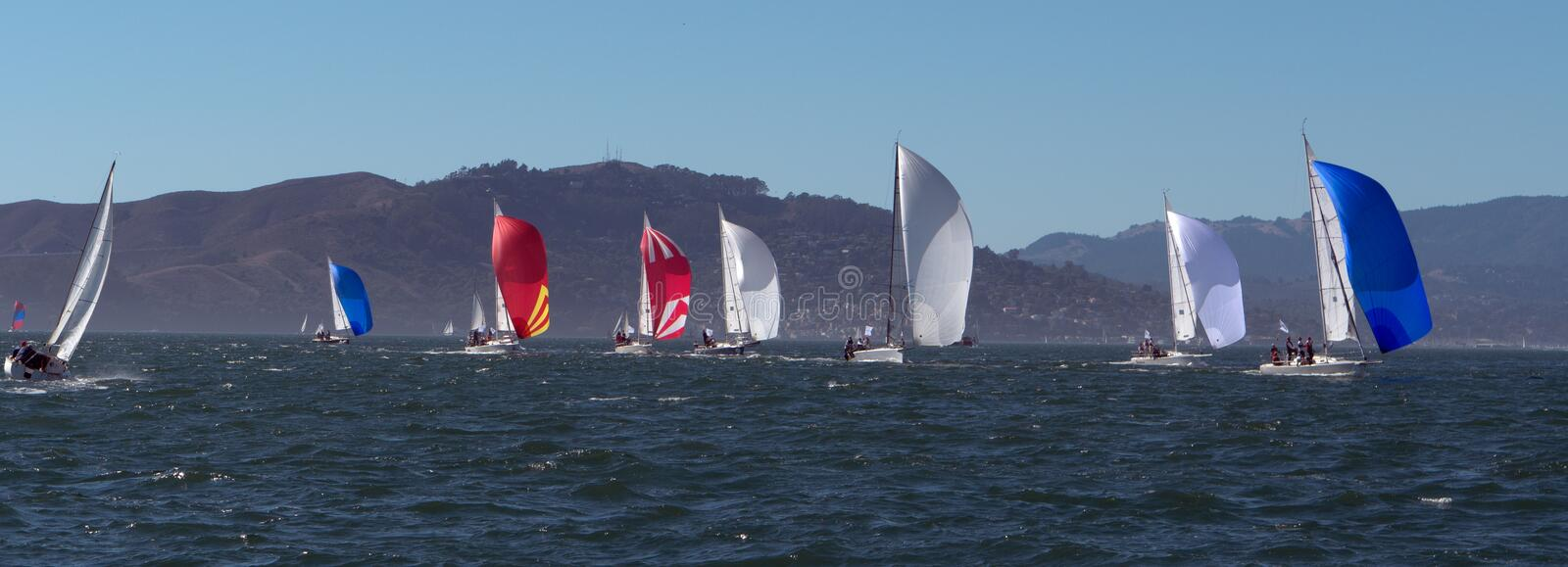 Sailboats with spinnakers at Rolex Cup. Sailboats flying spinnakers competing at Rolex Cup sailing event in San Francisco September 2015 royalty free stock photo