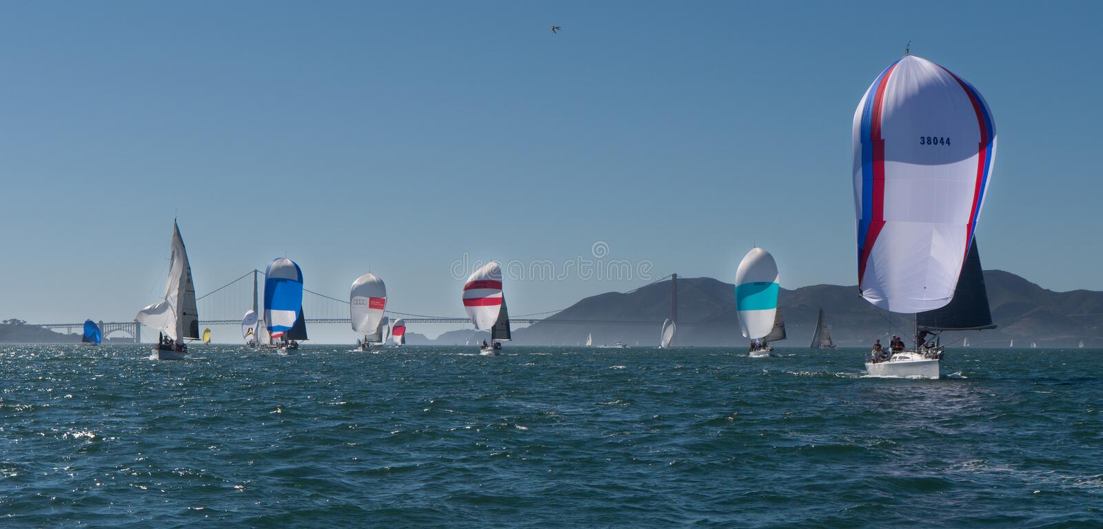 Sailboats with spinnakers at Rolex Cup. Sailboats flying spinnakers competing at Rolex Cup sailing event in San Francisco September 2015. Golden Gate bridge in royalty free stock photo