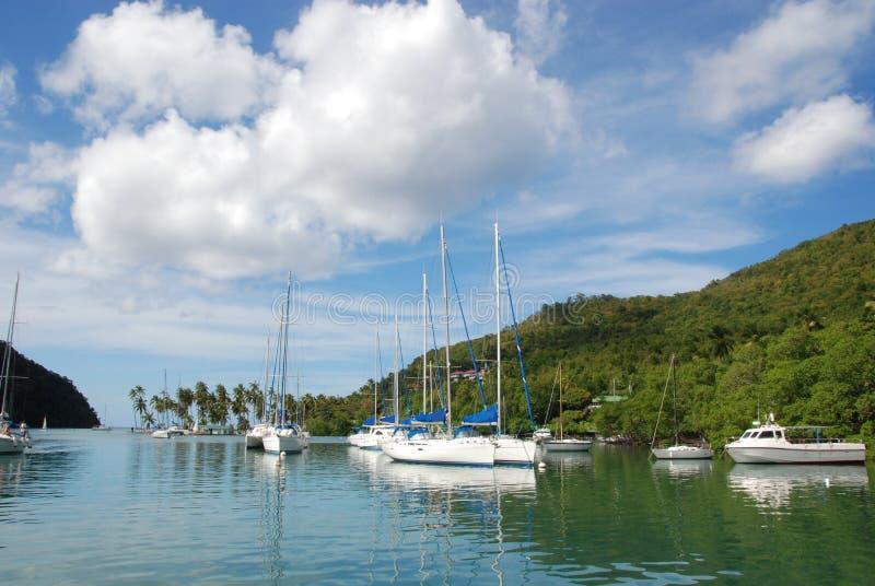 Sailboats in tropical harbor royalty free stock image
