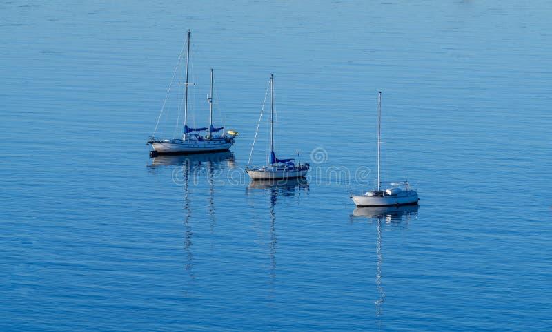 Sailboats. The sailboats was parking at English bay Vancouver ,bc Canada royalty free stock photo