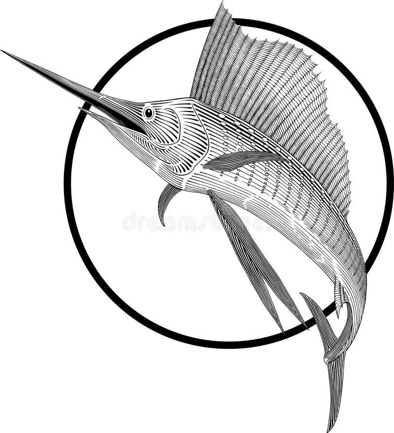Sailfish ilustração do vetor