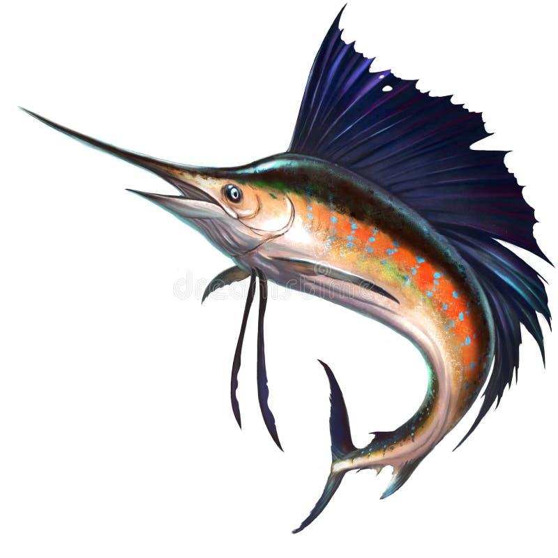 Sailfish on the background royalty free illustration